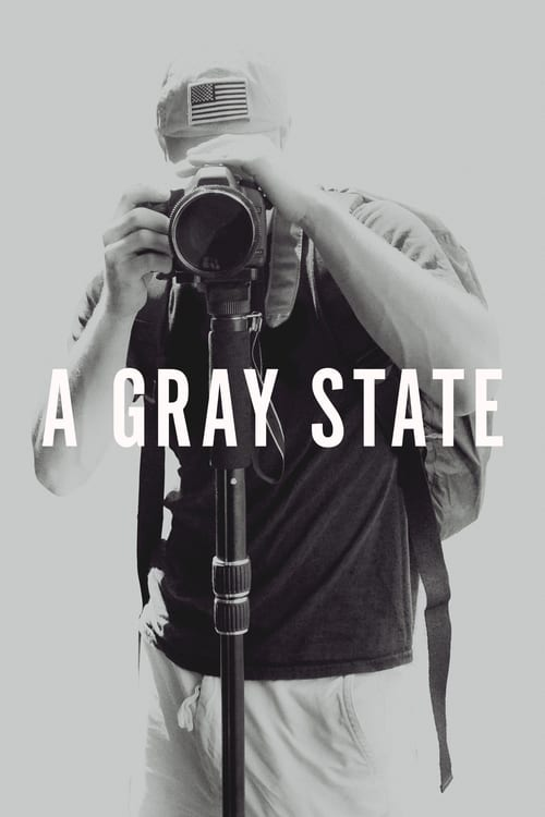 Box art for A Gray State