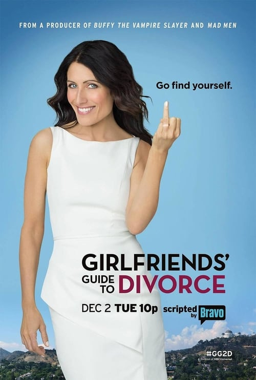 Watch Girlfriends' Guide to Divorce Season 1 Full Movie Download