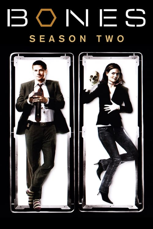 Watch Bones Season 2 in English Online Free