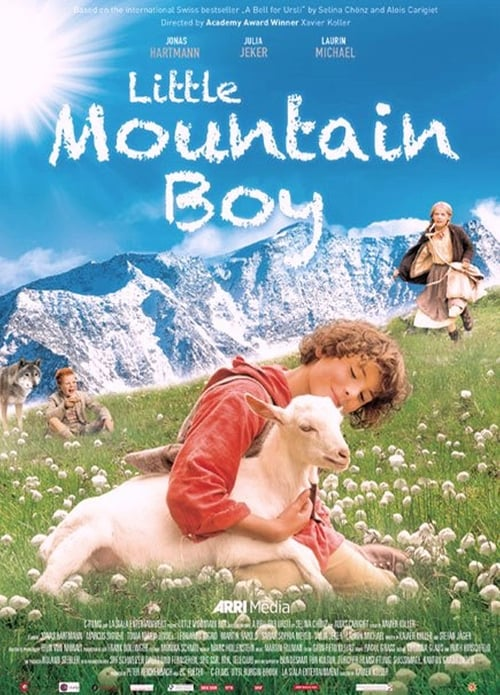 Little Mountain Boy