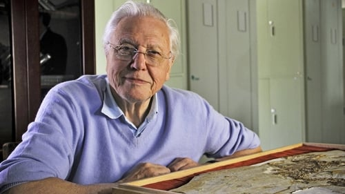 David Attenborough's Rise of Animals: Triumph of the Vertebrates Poster