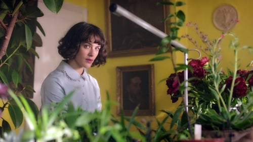 Watch This Beautiful Fantastic (2016) in English Online Free | 720p BrRip x264