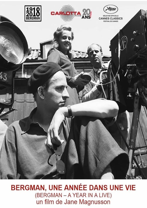 Bergman - A Year in Life