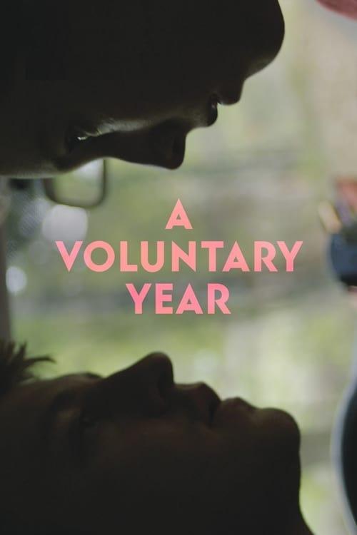 A Voluntary Year