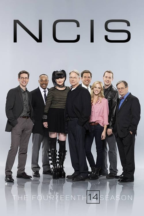 Watch NCIS Season 14 in English Online Free