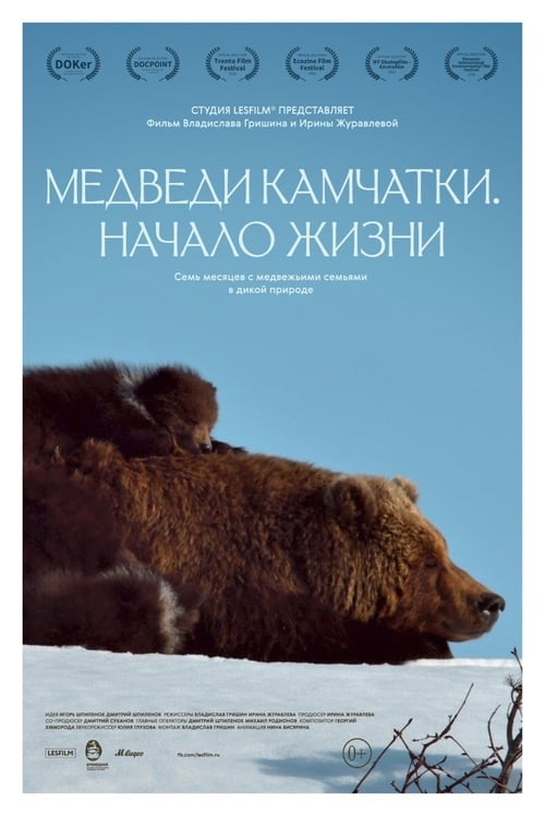 Kamchatka Bears. Life Begins