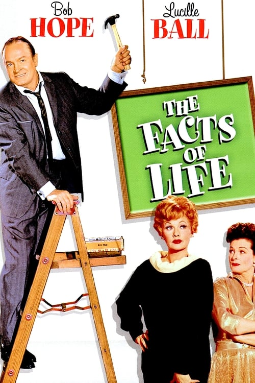 Largescale poster for The Facts of Life