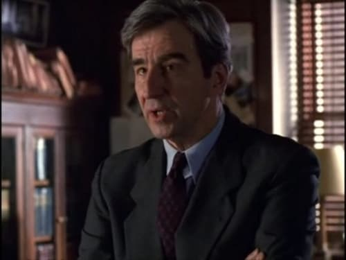 Watch Law & Order: Special Victims Unit S1E15 in English Online Free | HD