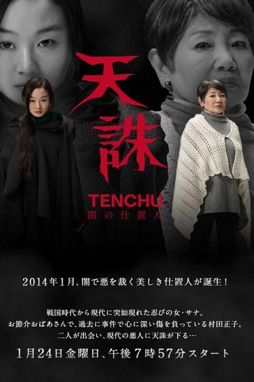 Tenchu: Ninja of Justice