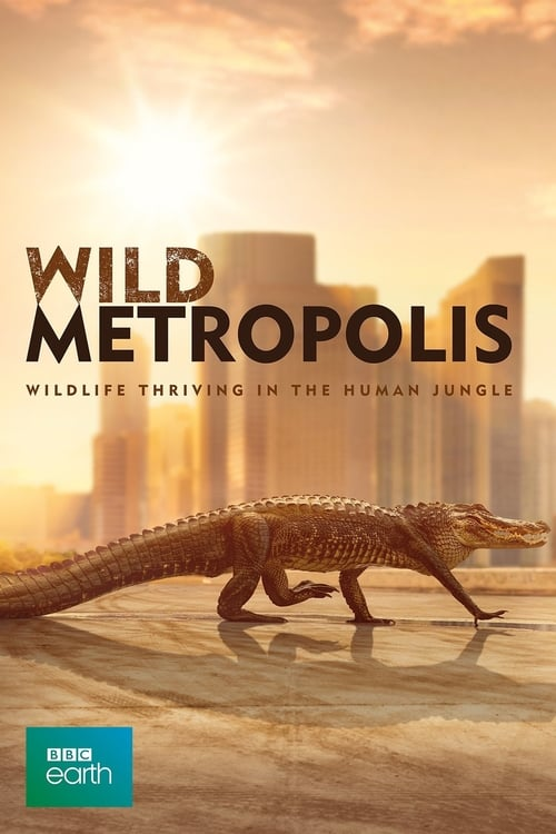 ©31-09-2019 Cities: Nature's New Wild full movie streaming
