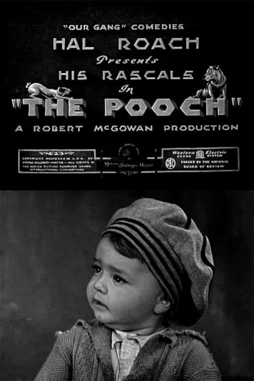 The Pooch