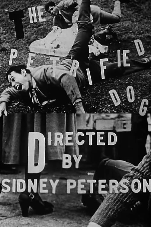 Largescale poster for The Petrified Dog
