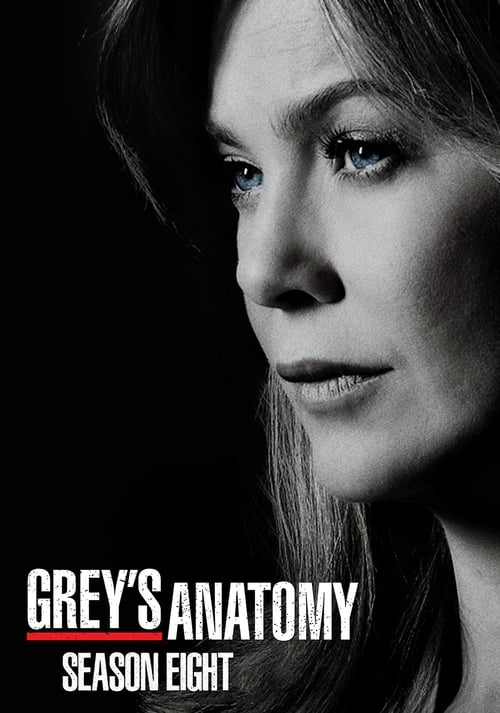 Grey's Anatomy - Season 8