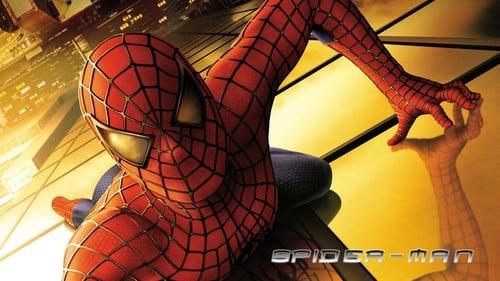 Watch Spider-Man (2002) in English Online Free   720p BrRip x264