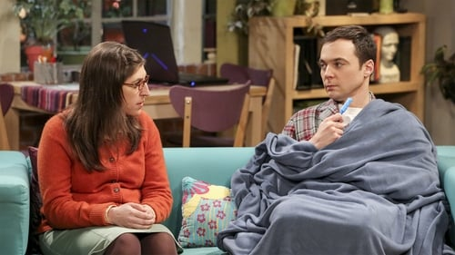 Watch The Big Bang Theory S10E20 in English Online Free | HD