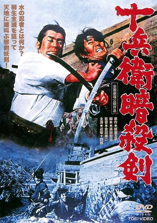 Yagyu Chronicles 9: Assassin's Sword
