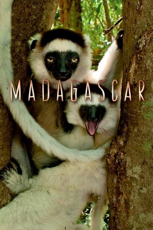 ©31-09-2019 Madagascar full movie streaming