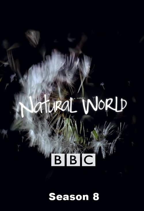 Watch Natural World Season 8 Full Movie Download