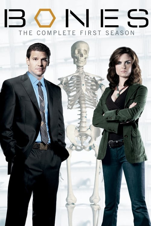 Watch Bones Season 1 in English Online Free