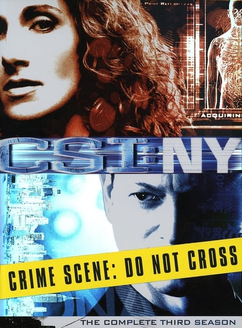 Watch CSI: NY Season 3 in English Online Free