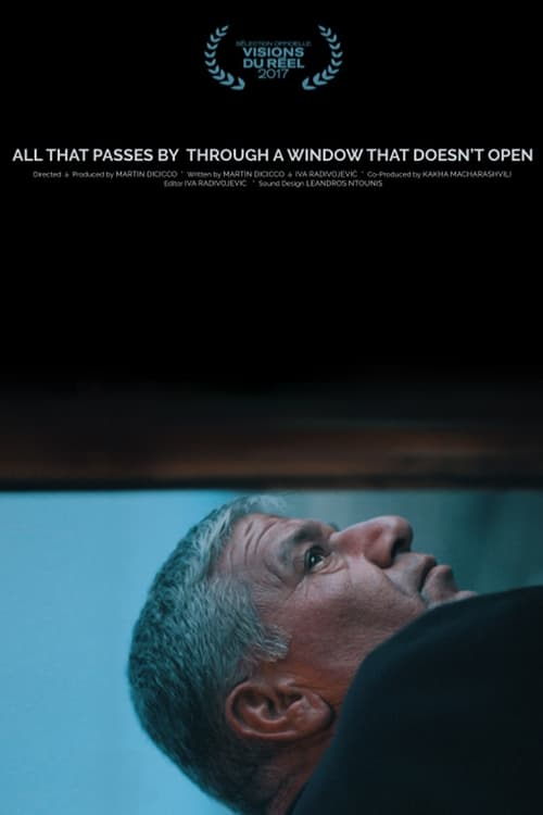 All That Passes By Through a Window That Doesn't Open