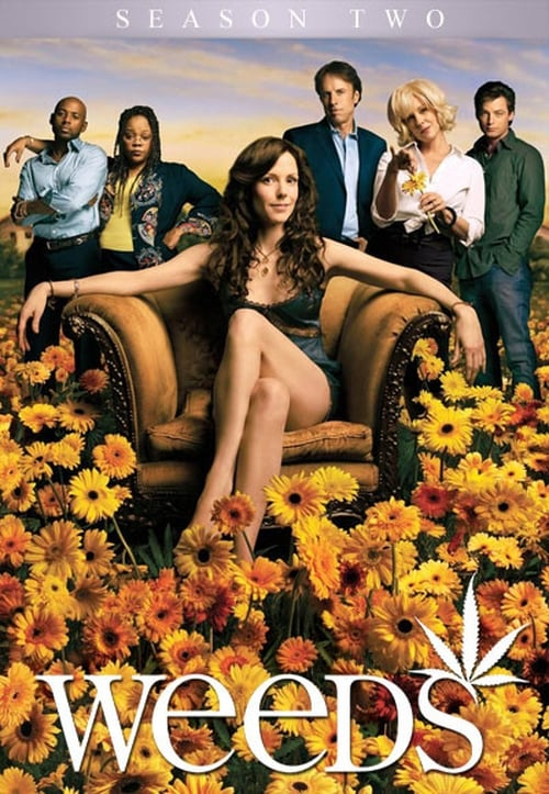 Watch Weeds Season 2 in English Online Free