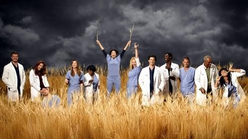 Grey's Anatomy Season 12 Episode 17 : I Wear the Face