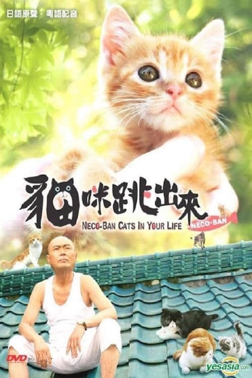 Neco-Ban: Cats in Your Life