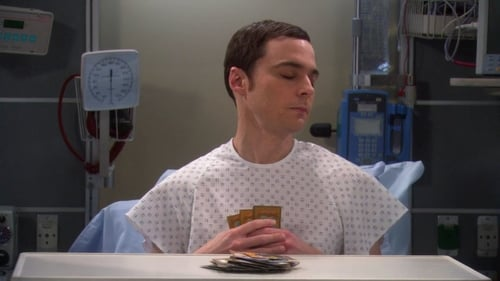 Watch The Big Bang Theory S4E23 in English Online Free | HD