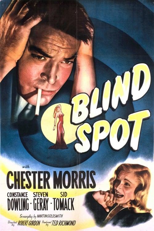 Watch Blind Spot Full Movie Download