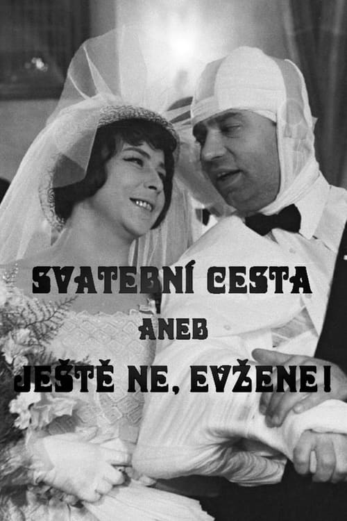 Svatební cesta aneb Ještě ne, Evžene!