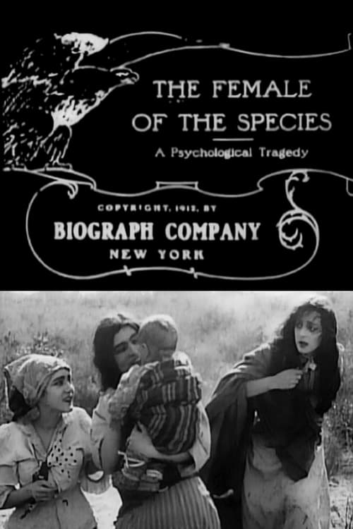 ©31-09-2019 The Female of the Species full movie streaming