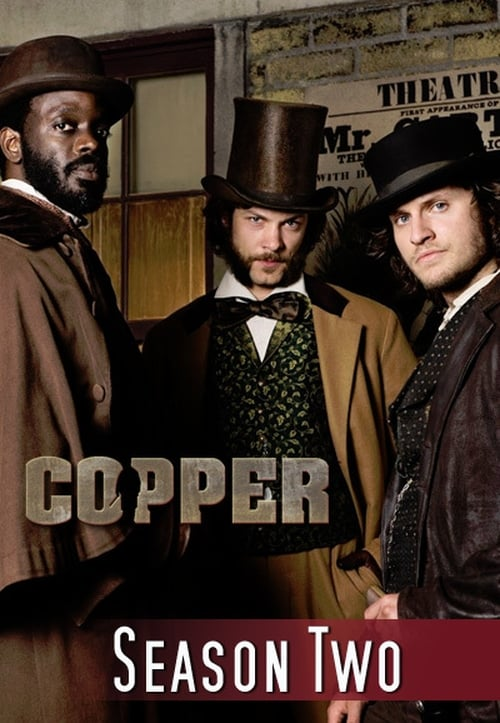Watch Copper Season 2 in English Online Free