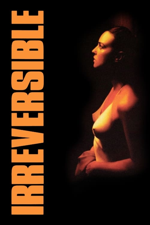 Irréversible poster