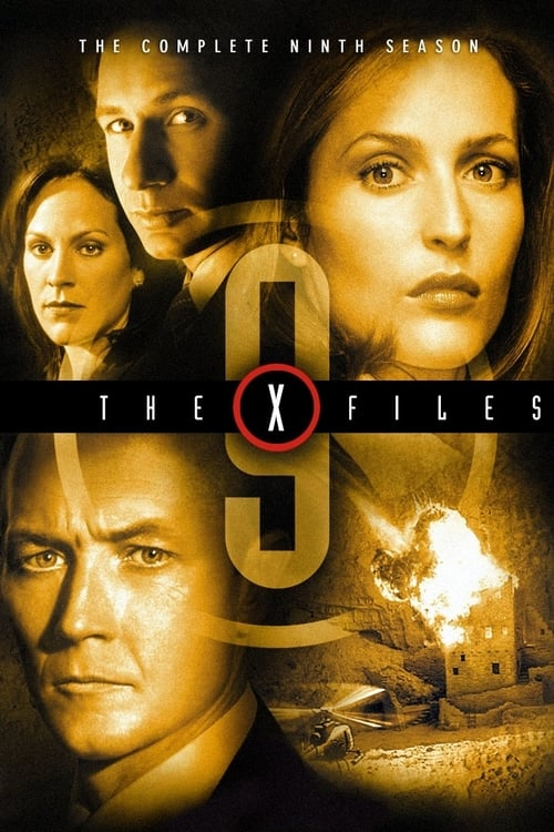 Watch The X-Files Season 9 in English Online Free