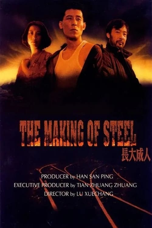 The Making of Steel