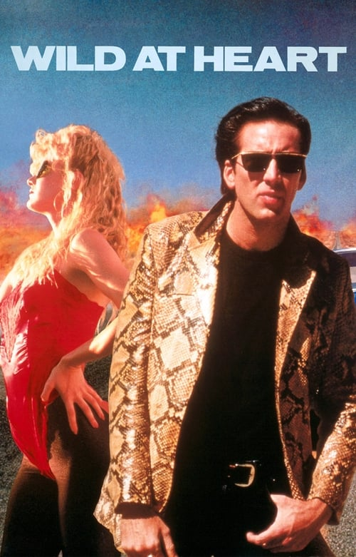Wild at Heart poster