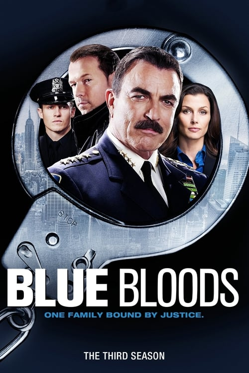 Watch Blue Bloods Season 3 in English Online Free