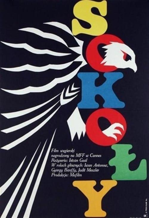Largescale poster for Magasiskola