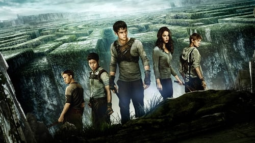Watch The Maze Runner (2014) in English Online Free | 720p BrRip x264