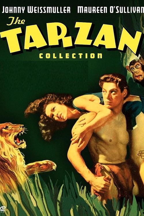 Tarzan: Silver Screen King of the Jungle