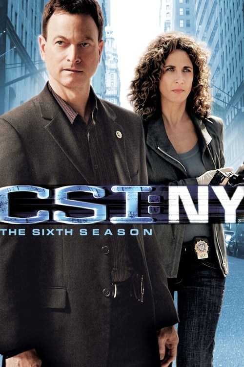 Watch CSI: NY Season 6 in English Online Free