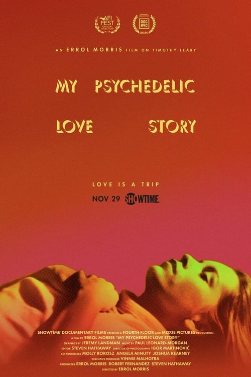 My Psychedelic Love Story