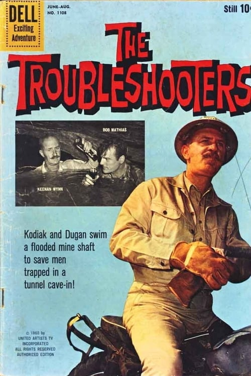 The Troubleshooters