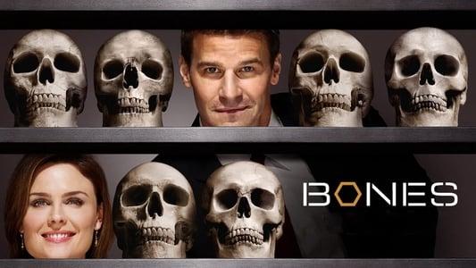 Bones Season 11 Episode 19 : The Head in the Abutment