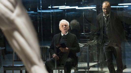Westworld Season One: The Maze