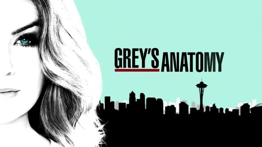 Grey's Anatomy Season 7 Episode 22 : Unaccompanied Minor