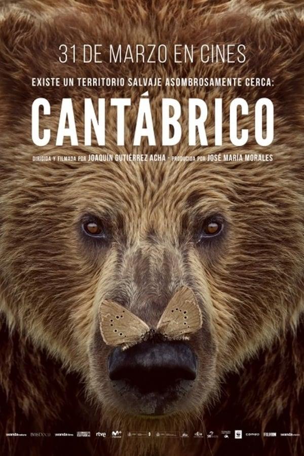 Cantábrico: Los dominios del oso pardo ()