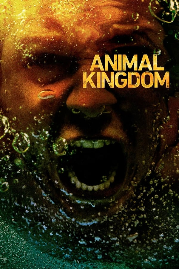 Animal Kingdom sasion 3 en streaming