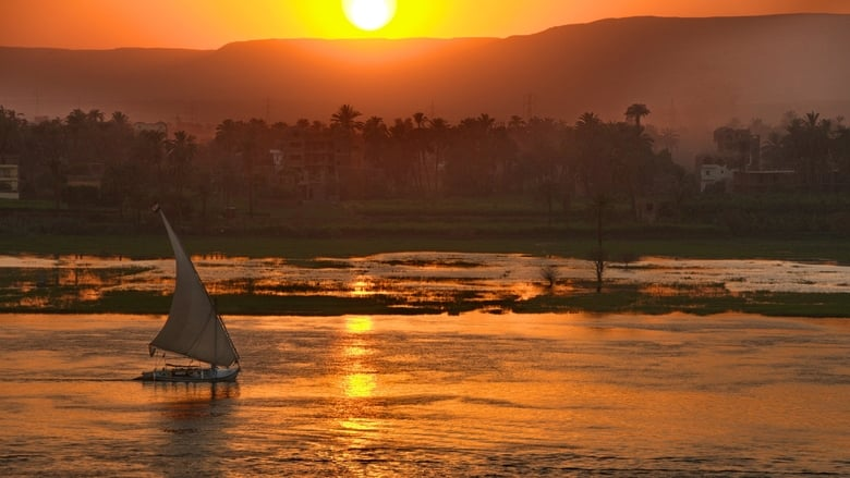 Wild Nile